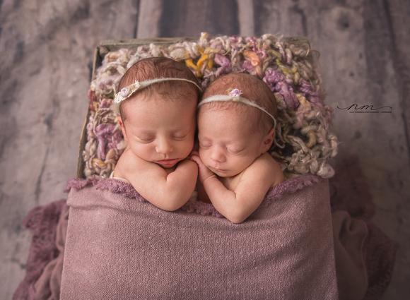 MaineNewbornPhographer-twins-babyposeinbox-babygirltwins copy